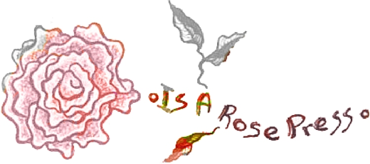 is a rose press: poetry, poetics, experimental writing, cross-genre and other work